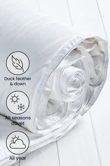 Duck Feather And Down Duvet (278408)   $101 - $151
