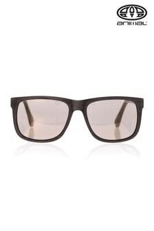 نظارة شمس مظهر مطفي Overcast سوداء من Animal