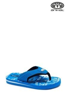 Animal Jekyl Flip-Flops mit Logo, Blau