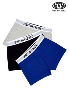 Animal Assorted Sound Boxer Shorts Three Pack