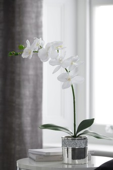 Artificial Orchid In Gem Pot