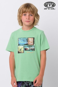 """Animal T-Shirt mit """"Mashed""""-Grafik, grün"""