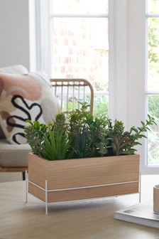 Artificial Succulent Plants in Window Box