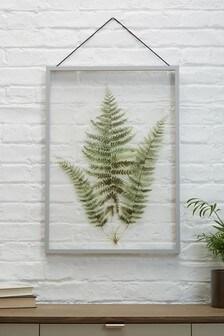 Large Botanical Floating Frame