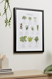 Plant Care Guide Framed Print