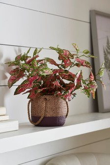 Artificial Pattern Leaf Plant In Pot