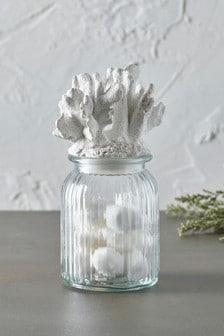 Coral Glass Jar