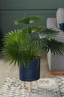 Stojak ze sztuczną palmą