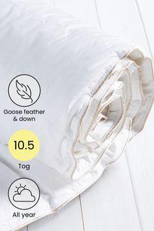 Goose Feather & Down Duvet (766831)   $101 - $151