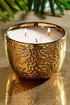 Pomelo & Ginger 3 Wick Candle
