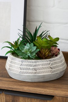 Artificial Succulents in Ceramic Bowl