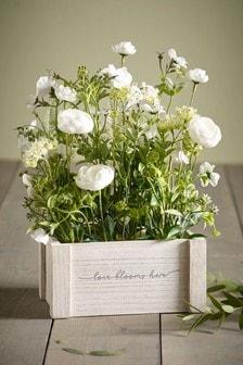 Skrzynka do kwiatów Love Blooms Here