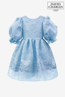 David Charles Blue Organza Dress