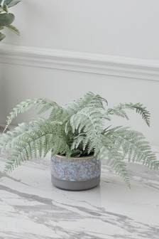 Artificial Fern in Ceramic Pot