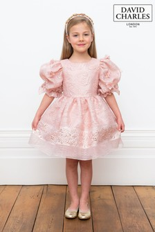 فستان أورغنزا وردي من David Charles