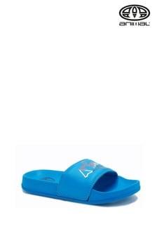 Animal blauwe slippers