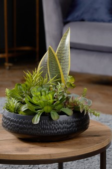 Artificial Succulent Plants In Pot