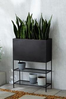 Artificial Sansevieria Plant In Black Trough