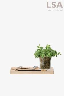 Lsa International Plateau 28cm Planter Set (994747)   $55