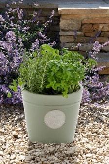 Happy Planter (998872) | $36