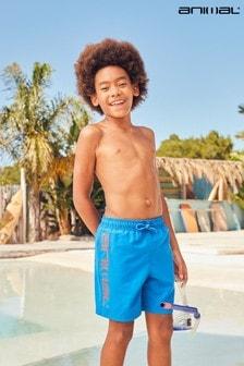 Animal Jungen Voyage Board-Shorts aus recycelten Materialien, Kobaltblau