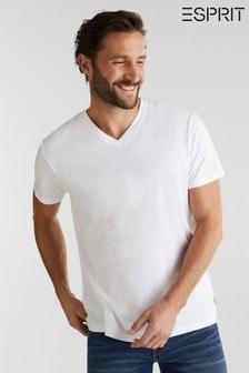Esprit Jersey T-Shirt in 100% Cotton