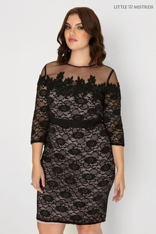Little Mistress Curve Lace Bodycon Dress