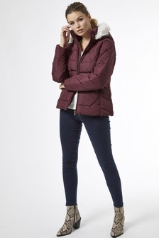 Dorothy Perkins Short Padded Jacket
