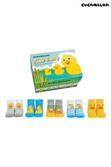 Cucamelon Newborn Pack of 5 Socks