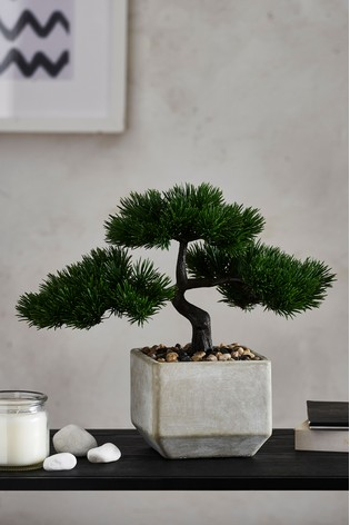 Buy Artificial Bonsai In Pot From The Next Uk Online Shop