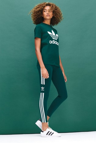 4a1fd48415f Buy adidas Originals Collegiate Green Trefoil T-Shirt from Next India