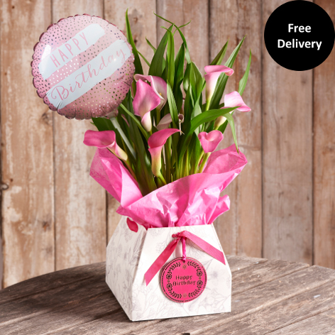 Next Flowers And Gift Cards Delivered Day